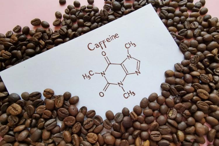 Java高性能缓存库Caffeine简介